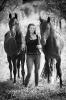 Pferde Shooting_2